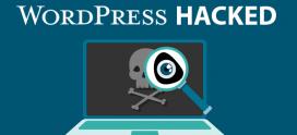 WordPress Plugin Activity Log 2.4.0 – Stored Cross Site Scripting